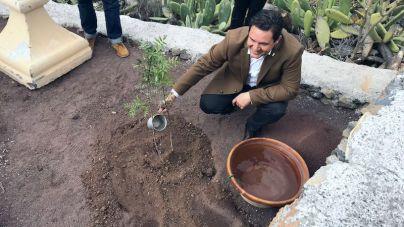 Arona se desconecta de las energías fósiles y apuesta sólo por las de origen renovable en instalaciones municipales