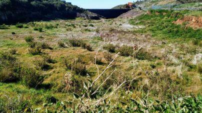 Valle Gran Rey solicita la declaración de emergencia hídrica