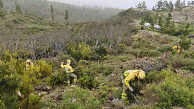 Transición Ecológica establece el periodo efectivo de trabajo de los EIRIF para 2020