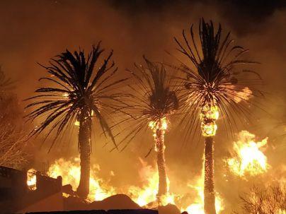La Brigada de Investigación (BIIF) del Cabildo inicia las pesquisas para determinar la causa de los incendios de Tasarte y el Bentayga