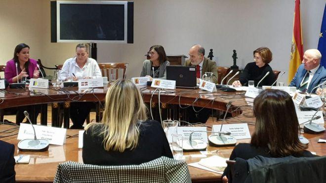 Yaiza Castilla expone en el Consejo Español de Turismo las medidas adoptadas en Canarias para informar a los turistas