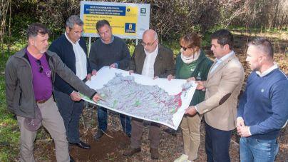 El Cabildo reforesta 30 ha con más 26.000 plantas de laurisilva para recuperar el Bosque prehispánico de Doramas