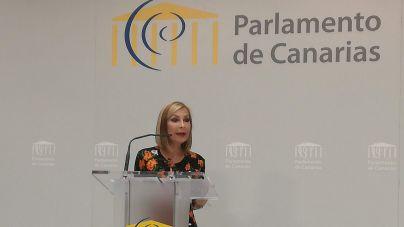 """Navarro: """"La crisis de la Covid-19 hace saltar por los aires las costuras del Gobierno de Canarias"""""""