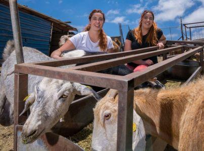 Las gemelas Beatriz y Natalia Mayor ganan el premio al Mejor Queso Curado de Gran Canaria