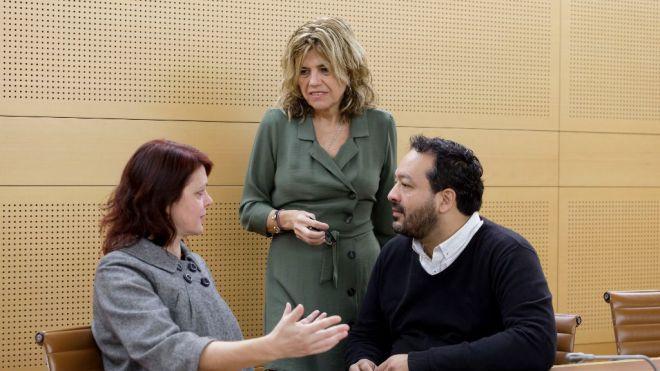 Sí Podemos Canarias prioriza la protección de La Tejita en el pleno del Cabildo de Tenerife