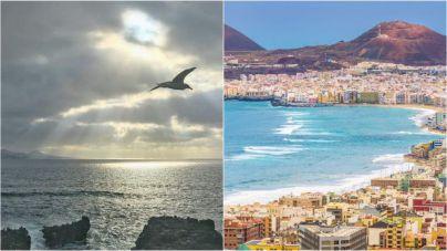 La panza de burro: el secreto de Las Palmas para alejarse de las altas temperaturas veraniegas