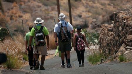 El Ayuntamiento recomienda no peregrinar a Candelaria debido a la COVID-19
