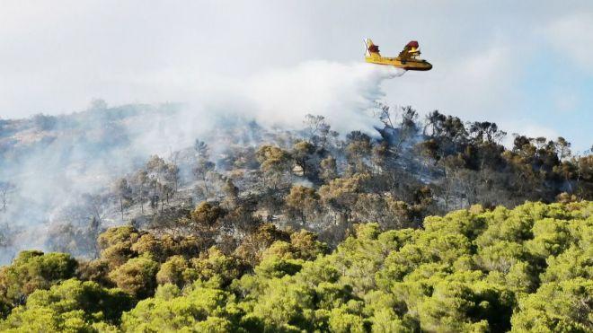 Dan por estabilizado el incendio forestal de Garafía en La Palma