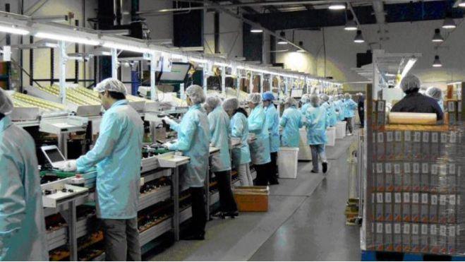 Los precios industriales caen un 7%
