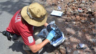 La Gomera intensifica los trabajos de inspección de los tendidos eléctricos para evitar riesgos a la avifauna