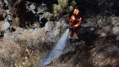 La Palma da por extinguido el gran incendio forestal de Garafía