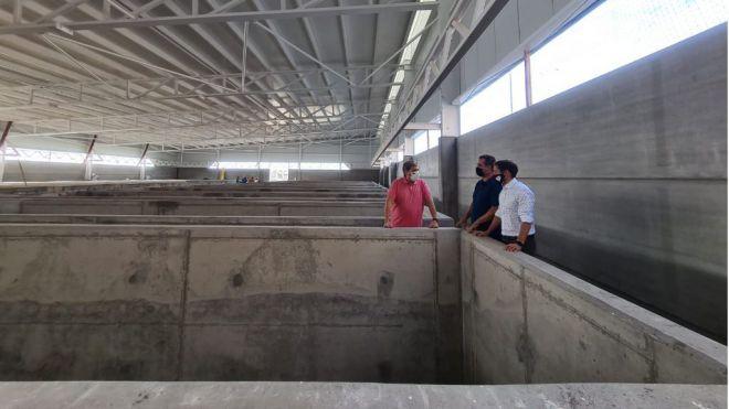 Uso de los fondos europeos para incentivar la actividad acuicultora en Canarias