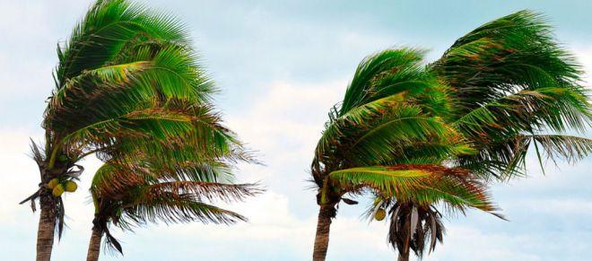 Alerta por Vientos en Islas Occidentales y Gran Canaria