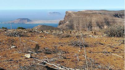 Transición Ecológica inicia la toma de muestras del suelo para la restauración de hábitat en Famara
