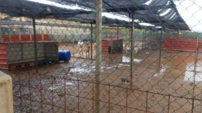 CC-PNC denuncia nuevas inundaciones en el refugio de Tierra Blanca ante la pasividad del Psoe
