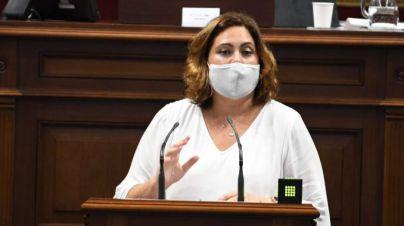 CC defiende que Canarias se incluya en la hoja de ruta para la implantación del hidrógeno verde en España