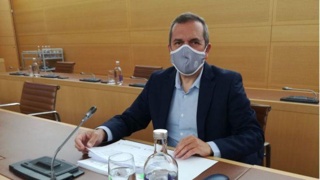 El PP plantea que el Cabildo desarrolle una actuación integral contra la mosca blanca y el escarabajo Diocalandra