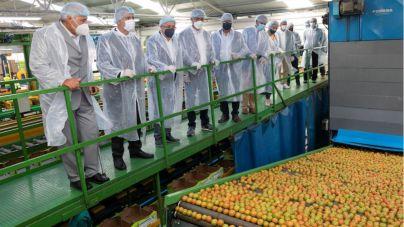 Spar Gran Canaria firma el convenio del tomate de la Aldea con Coagrisan