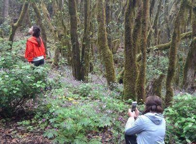 La prensa alemana elige La Gomera como destino turístico preferente