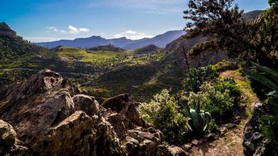 La Gomera se integra en el Corredor Biológico Mundial
