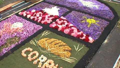 Tacoronte celebrará otro año el Corpus con un tapiz dedicado a las víctimas de la pandemia de dimensiones más reducidas