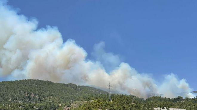 El Gobierno de Canarias declara el nivel 2 del INFOCA y asume la dirección del incendio forestal en Tenerife
