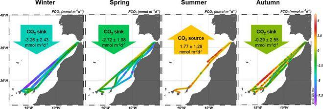 Canarias se comporta como un sumidero neto de carbono