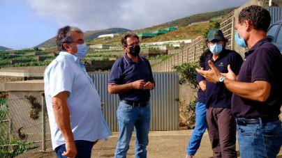 """""""El cultivo ecológico en La Palma es viable y factible, es el camino que tenemos que recorrer"""""""