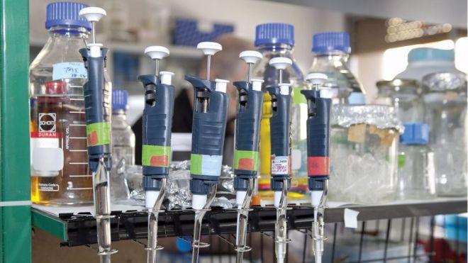 Descubren nuevas alteraciones inmunológicas causantes de COVID-19 con cuadro clínico grave