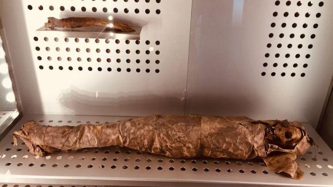 El MUNA proyecta un documental sobre el traslado de las momias guanches de Necochea