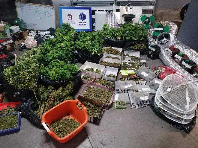 Detenidos dos jovenes por cultivo de marihuana en Candelaria