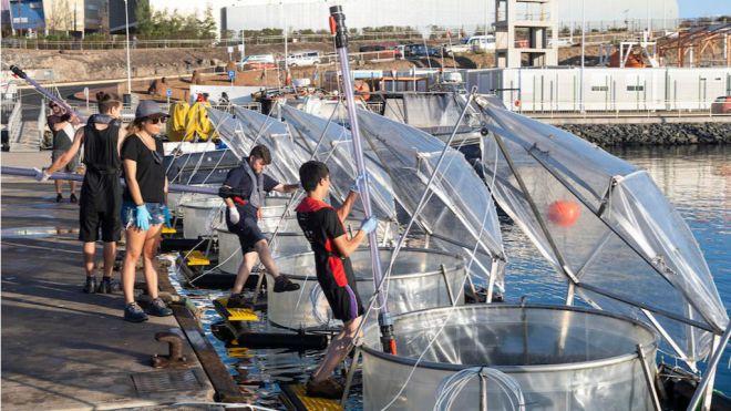 El Cabildo cede Taliarte para una investigación sobre la capacidad de los océanos para eliminar CO2