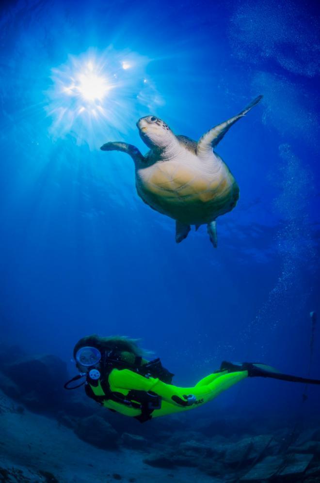 Canarias promociona sus fondos marinos en la Mediterranean Diving Show
