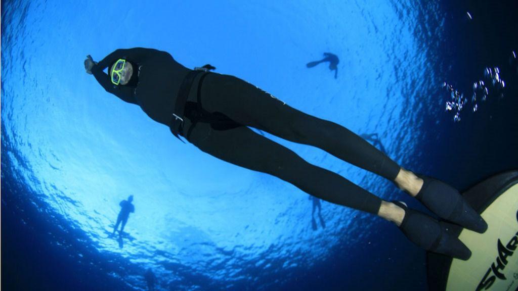 CC-PNC defiende la pesca recreativa responsable y sostenible en Tenerife