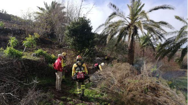 El Cabildo inicia los trabajos de ejecución de un cinturón de defensa contra incendios en Chipude