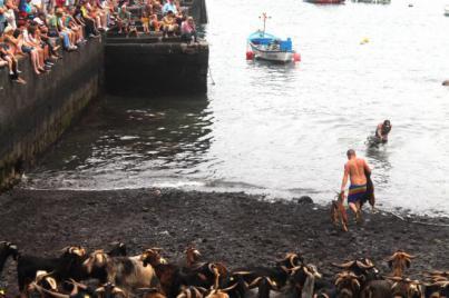 Fuego, música y arte protagonistas en las Fiestas de San Juan de Puerto de la Cruz