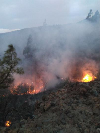 Declarado un incendio forestal en la zona alta de Granadilla