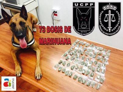 La Policía Local de Arona se incauta de 73 dosis de marihuana enterradas en jardineras y dispuestas para la venta