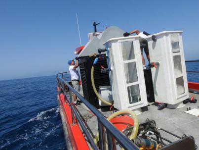 Las microalgas desaparecen de Tenerife y se disuelven en Gran Canaria, El Hierro y La Palma