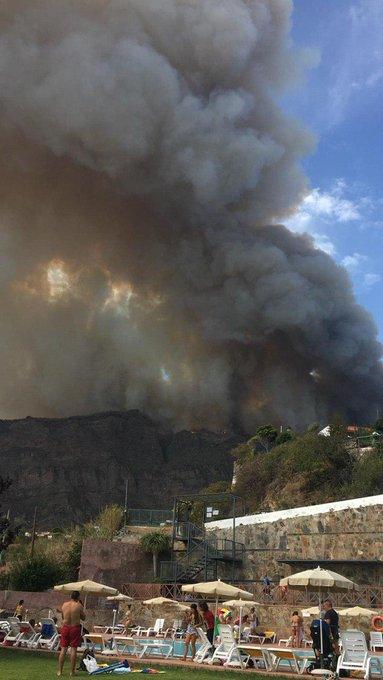 El Gobierno declara nivel 2 y asume la dirección del incendio forestal en Gran Canaria