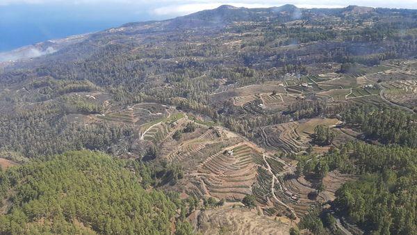 El incendio de La Palma se mantiene estable tras los trabajos de vigilancia y refresco de la noche
