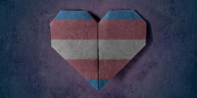 Día Internacional de Lucha por la Despatologización Trans