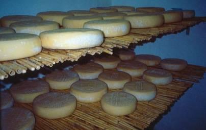 Los quesos de Gran Canaria baten récord con 14 medallas en la feria internacional WCA