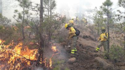 Continúan los trabajos para controlar el incendio forestal de Granadilla