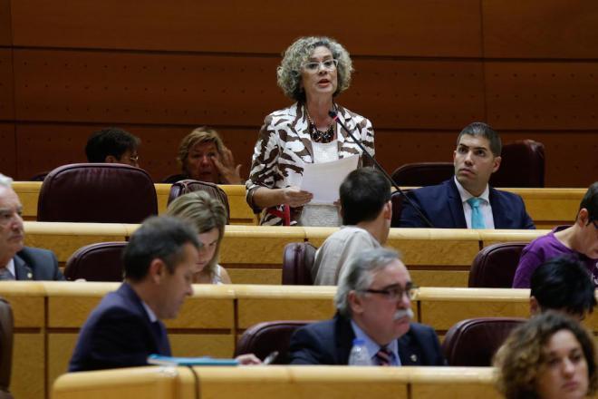 El PP rechaza la solicitud de CC para trámitar de urgencia el Estatuto y el REF en el Senado