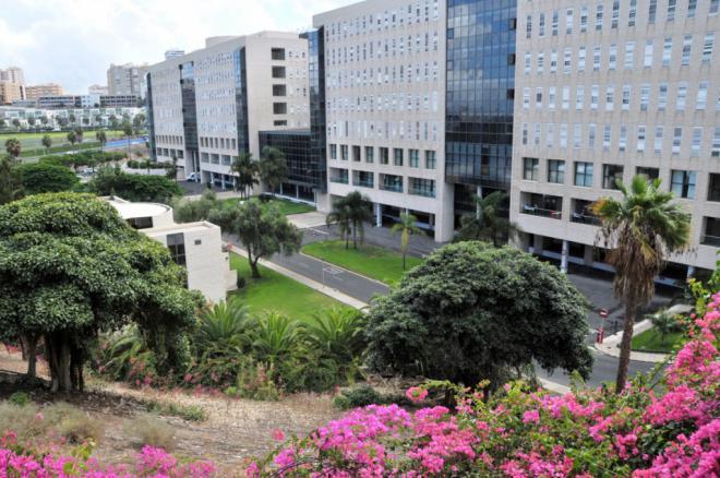 Sanidad notifica 126 nuevos casos de COVID-19 en las últimas 24 horas