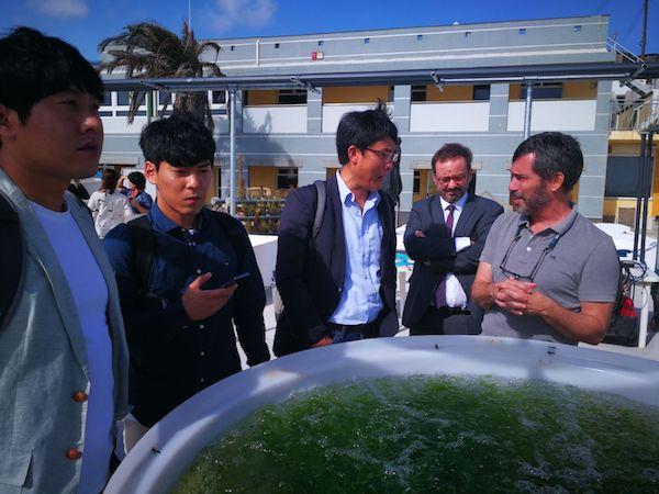 El Instituto coreano Kiost firmará convenios de biotecnología azul en Gran Canaria