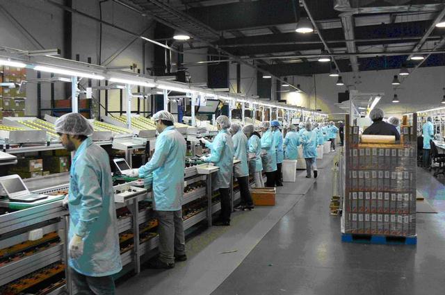 La producción industrial crece en Canarias un 2,5% en junio
