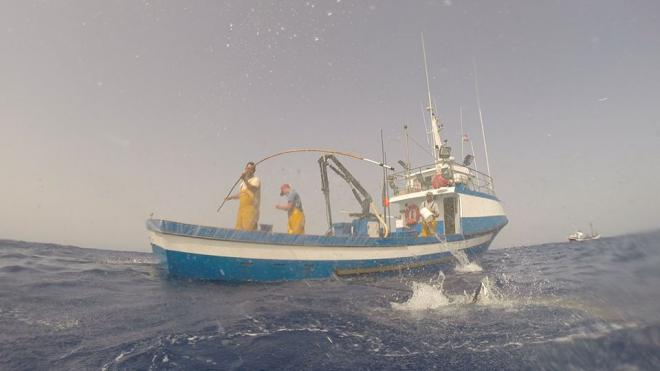 La historia de La Tiñosa, su origen pesquero y turístico
