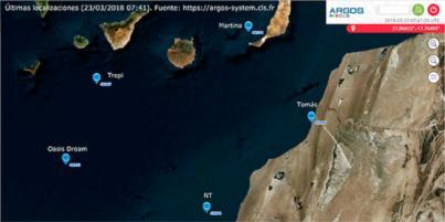 Las cinco tortugas con transmisores emprenden su viaje por aguas de Canarias y la costa africana